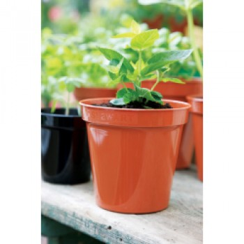 Flower Pot Terracotta - 8