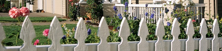 Paint (Exterior Colours)