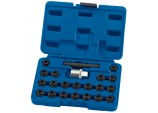 BMW Locking Wheel Nut Set (22 piece)