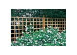 Heavy Duty Trellis - 6' x 3'