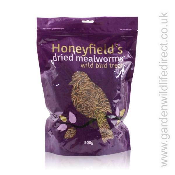 Mealworms 100g – Now Only £2.00